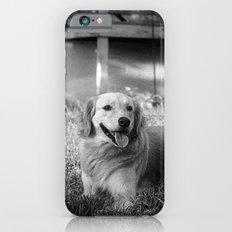 Buddy Slim Case iPhone 6s