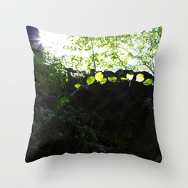 Sun through the trees in the woods Throw Pillow