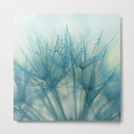 dandelion blue IX Metal Print