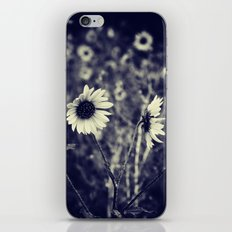 The Sunshine Boquet iPhone & iPod Skin
