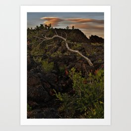 In the Lava Fields Art Print