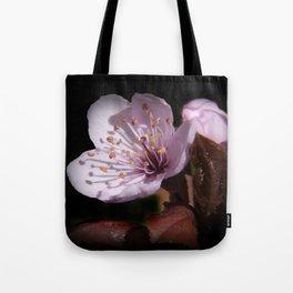 japanese cherrytree-blossom on black -2- Tote Bag