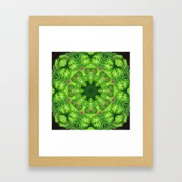 Spring green Canadian Hemlock mandala Framed Art Print