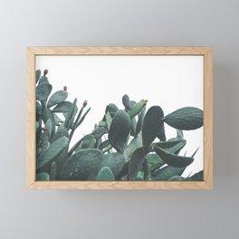 Fruit Cactus Desert Framed Mini Art Print
