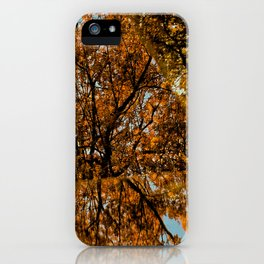 Reflected Tree iPhone Case