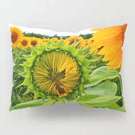 Sunflower Prepares to Unfold Itself Pillow Sham