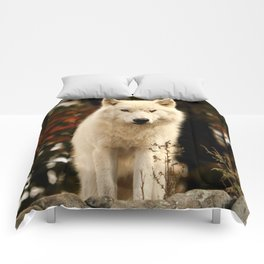 King of the hill Comforters