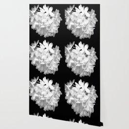 "Hydrangea ""SnowBall"" In Black And White Wallpaper"