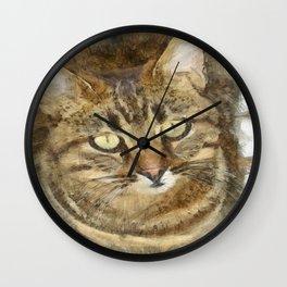 Cute Tabby Looking Up Wall Clock