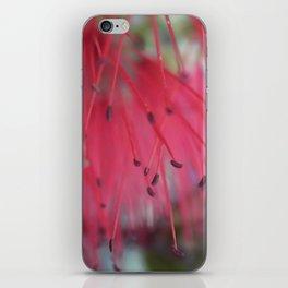 bottlebrush iPhone Skin