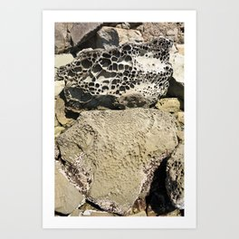 Stone Lace Stack Boulder Rock Sandstone Limestone Geology Geologist Washington Northwest Art Print