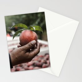 Migrant workers feed us. Stationery Cards