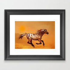 HORSE - An Appaloosa called Ginger Framed Art Print