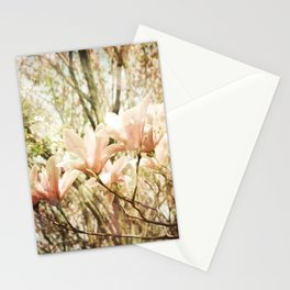 Transcend Stationery Cards