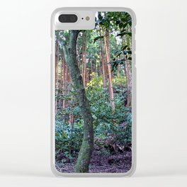 Furnas Forest Clear iPhone Case