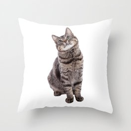 Cute Tabby Cat Looking Up Throw Pillow