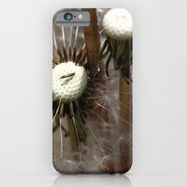 Dandelion 2013 no.7 iPhone Case