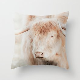 Blond Scottish Highland Cow Photo   Animal Photography   Scottish Highlander Throw Pillow