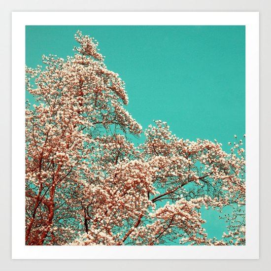 magnolia tree XV Art Print
