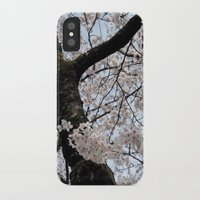 cyarin iPhone & iPod Cases featuring Sakura Blooming (Japan) by Julie Maxwell