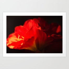 Red flower abstract Art Print