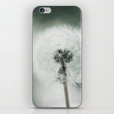 Soft End iPhone & iPod Skin
