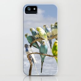 Parakeets perched on a limb iPhone Case