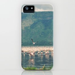 Vintage Africa 22 iPhone Case
