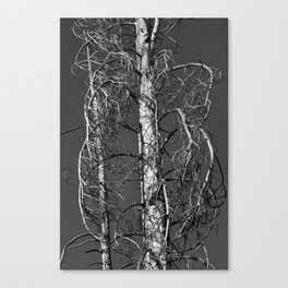 One Dead Tree Canvas Print