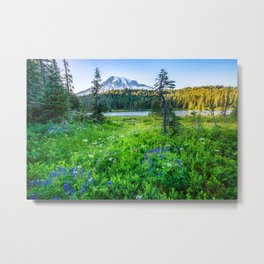 Rainier Wildflowers - Mt. Rainier in the Fall at Reflection Lake Metal Print
