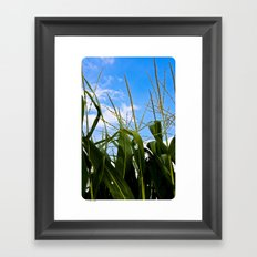 Car Food Framed Art Print