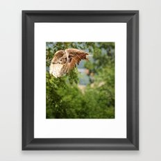 Silent flight Framed Art Print