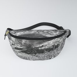 Lonely Duckling - Black & White Fanny Pack