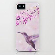 Pink Dreams    (Hummingbird) Slim Case iPhone (5, 5s)