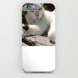 Black and White Bicolor Cat Lounging on A Park Bench iPhone Case