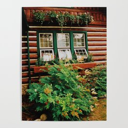 Cabin life Poster