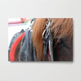 NYC Horse Metal Print