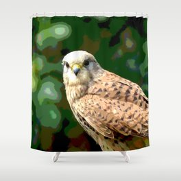 Falcon kestrel Shower Curtain