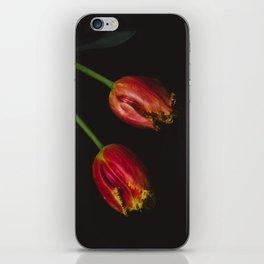 Dalliance iPhone Skin