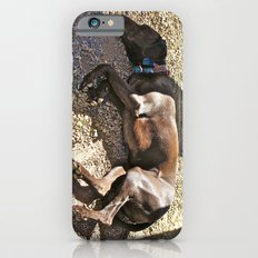 Sleepy Alaska iPhone 6s Slim Case