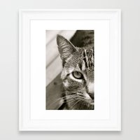 sassy Framed Art Prints featuring Sassy by Rebekah Shennan Michael