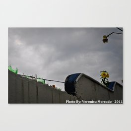 The Lone Yellow flower with broken glasss Canvas Print