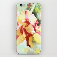water colour iPhone & iPod Skins featuring Water colour parrot tulip by thea walstra