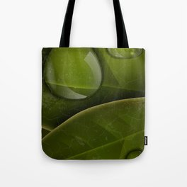 dew drops on green leaves Tote Bag