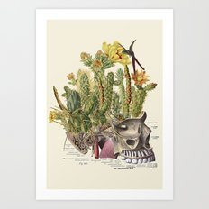 pinheaded anatomical skull collage by bedelgeuse Art Print