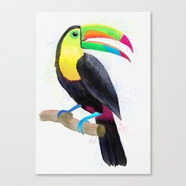 Colorful Tropical Toucan Watercolor Painting , Birds Collection  Canvas Print