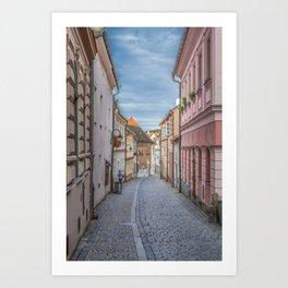 European Alley Art Print
