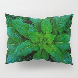 Vernal Verdure Pillow Sham