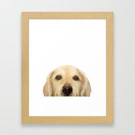 Golden retriever Dog illustration original painting print Framed Art Print