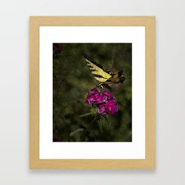 Ragged Wings Framed Art Print